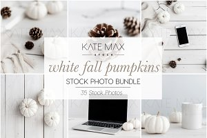 White Fall Pumpkin Stock Photo Bundl