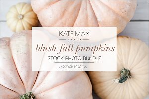 Blush Fall Pumpkin Stock Photo Bundl