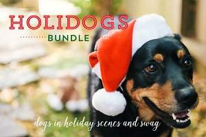 Holi-Dog Photo Bundle (Holiday Dogs)