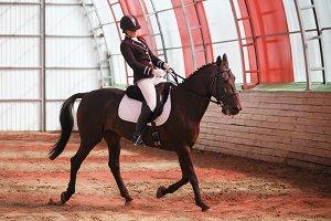Jockey rides horse in arena