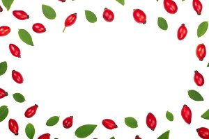 rosehip berries isolated on white background with copy space for your text. Flat lay pattern. Top view