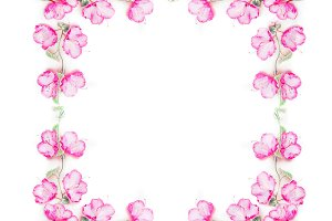 Floral square frame with pink flower