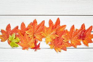 Thanksgiving Autumn Leaves Background