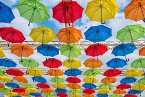 Many umbrellas coloring the sky