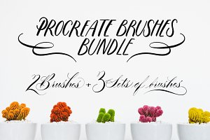 PROCREATE LETTERING BRUSHES BUNDLE