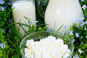 Dairy products on grass