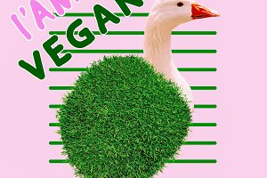 Vegan mood Stylish design