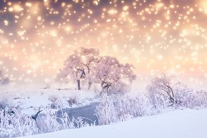 Christmas Holiday Background with sn