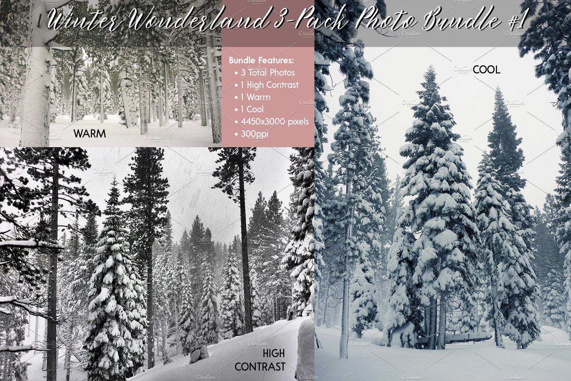 Winter Wonderland 32 Pack Bundle 32   High Quality Nature Stock ...