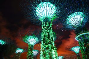 Supertree in Singapore at night.