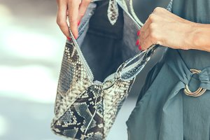 Closeup woman hands with luxury snakeskin python handbag outdoors. Bali island.