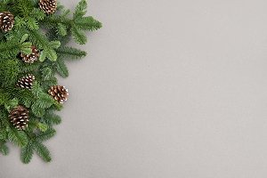Christmas tree branches grey back