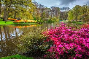 Famous Keukenhof park, Netherlands