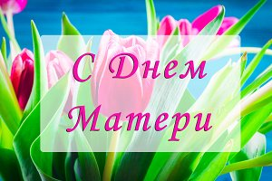Bouquet of pink tulips on a blue wooden background with an inscription in the Russian language - Happy Mother's Day.