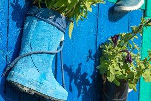 Rubber boots on door