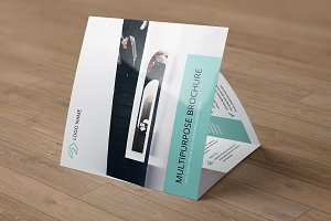 Trifold Business Brochure V764