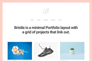 Bristle - Portfolio WordPress Theme