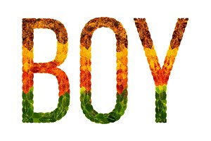 word Boy written with leaves white isolated background, banner for printing, creative illustration of colored leaves.