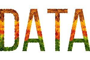 word data written with leaves white isolated background, banner for printing, creative illustration of colored leaves.