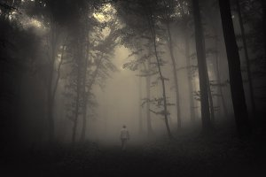 Man walking in haunted dark forest