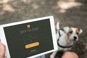 iPad Pro & a dog - 4 photo mockups