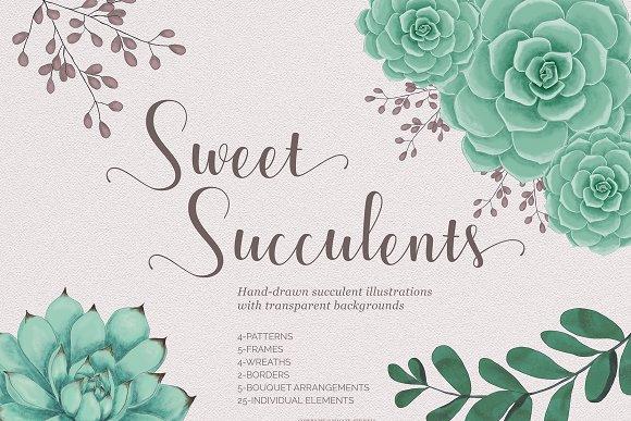 Sweet Succulents Design Set 手绘多肉-Graphicriver中文最全的素材分享平台