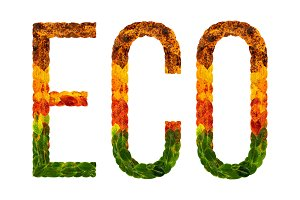 word eco written with leaves white isolated background, banner for printing, creative illustration of colored leaves.