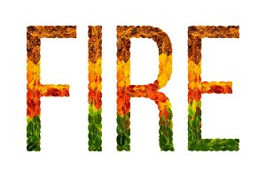 word fire written with leaves white isolated background, banner for printing, creative illustration of colored leaves.