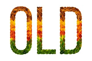 word old written with leaves white isolated background, banner for printing, creative illustration of colored leaves.