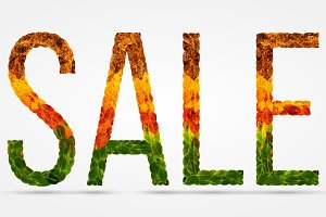 word sale written with leaves white isolated background, banner for printing, creative illustration of colored leaves.