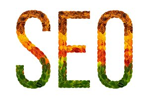 word seo written with leaves white isolated background, banner for printing, creative illustration of colored leaves.