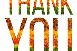 word thank you written with leaves white isolated background, banner for printing, creative illustration of colored leaves.