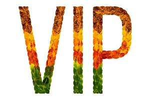 word vip written with leaves white isolated background, banner for printing, creative illustration of colored leaves.