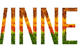 word winner written with leaves white isolated background, banner for printing, creative illustration of colored leaves.