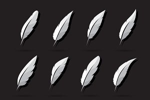 Vector group of feather. Icon.