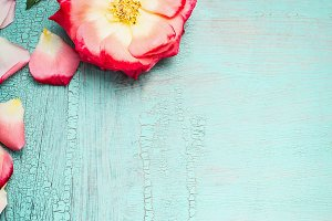 Flower on turquoise shabby chic
