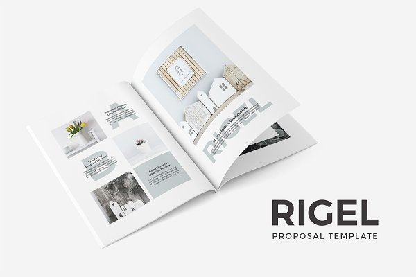 Rigel Proposal Template