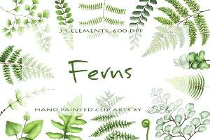 Fern Watercolor Clipart