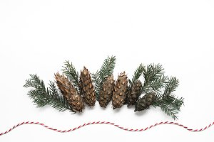Spruce cones styled stock photo