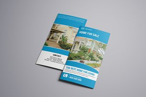 Trifold Real Estate Brochure V767