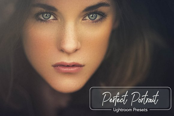 20 Portraits Lightroom Pres-Graphicriver中文最全的素材分享平台