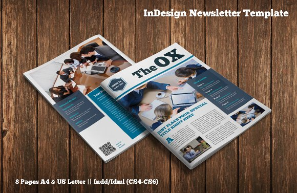 InDesign Newsletter Template Magazine Templates Creative Market