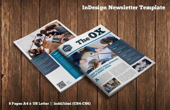 InDesign Newsletter Template Magazine Templates Creative Market
