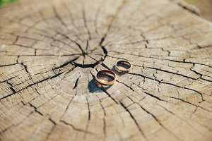 Wedding engagement rings on the old wooden stump with tree rings. Wedding background.