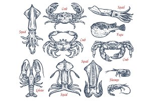 Seafood animal sketch set of fish and crustacean