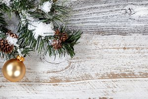 Golden Ornament on Fir