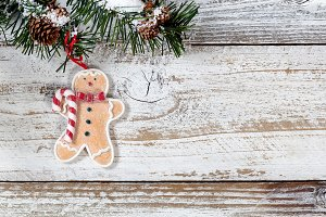 Christmas Cookie Ornament in Fir