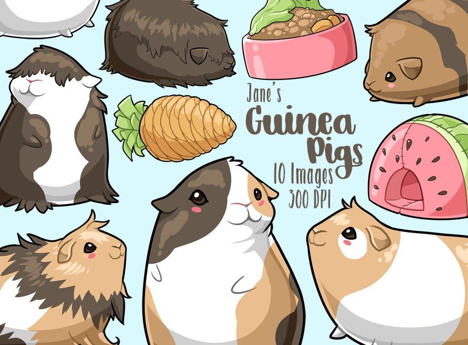 Kawaii Guinea Pigs Clipart Illustrations