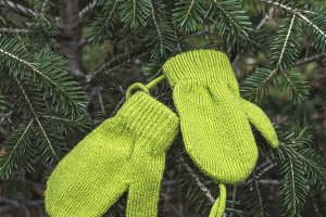 Winter green gloves on fir