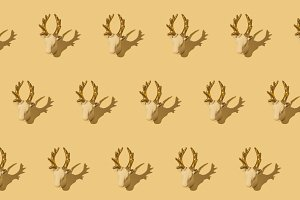 Deer repeated